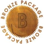 Bronze Logo Design Package