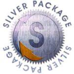 Silver Logo Design